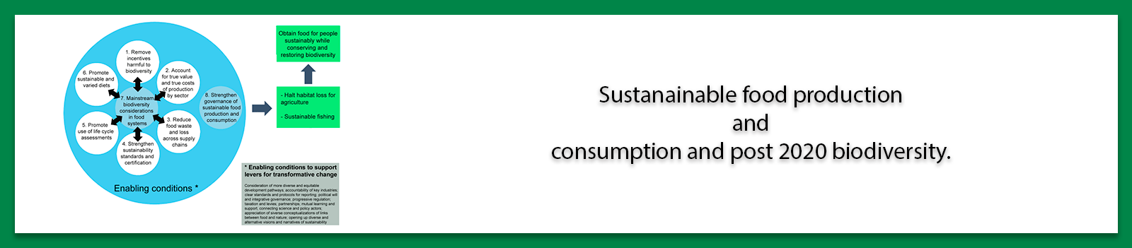 Sustanainable food production and consumption and post 2020 biodiversity.