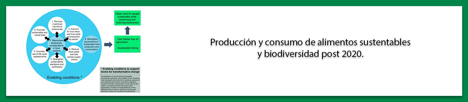 Producción y consumo de alimentos sustentables y biodiversidad post 2020.
