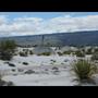 Vulnerabilidad de la dinámica de nutrientes a escenarios de cambio climático global en un ecosistema desértico de México - Cristina Montiel González